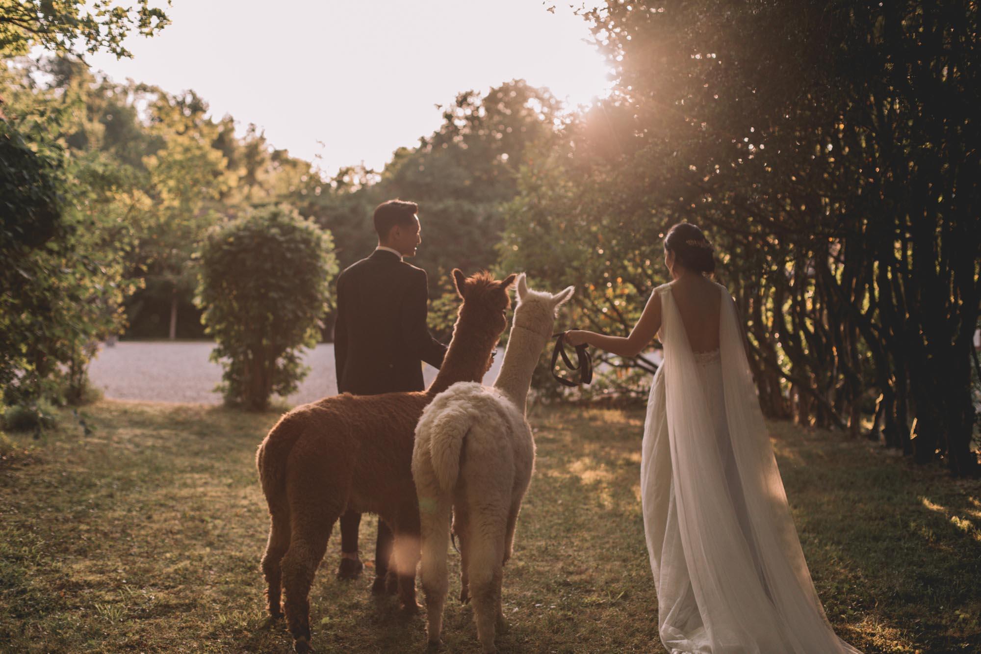 SOPHIA + THIBAUD_MANOIR SAINT HUBERT_PHOTOGRAPHE_MARIAGE_LES BANDITS-10