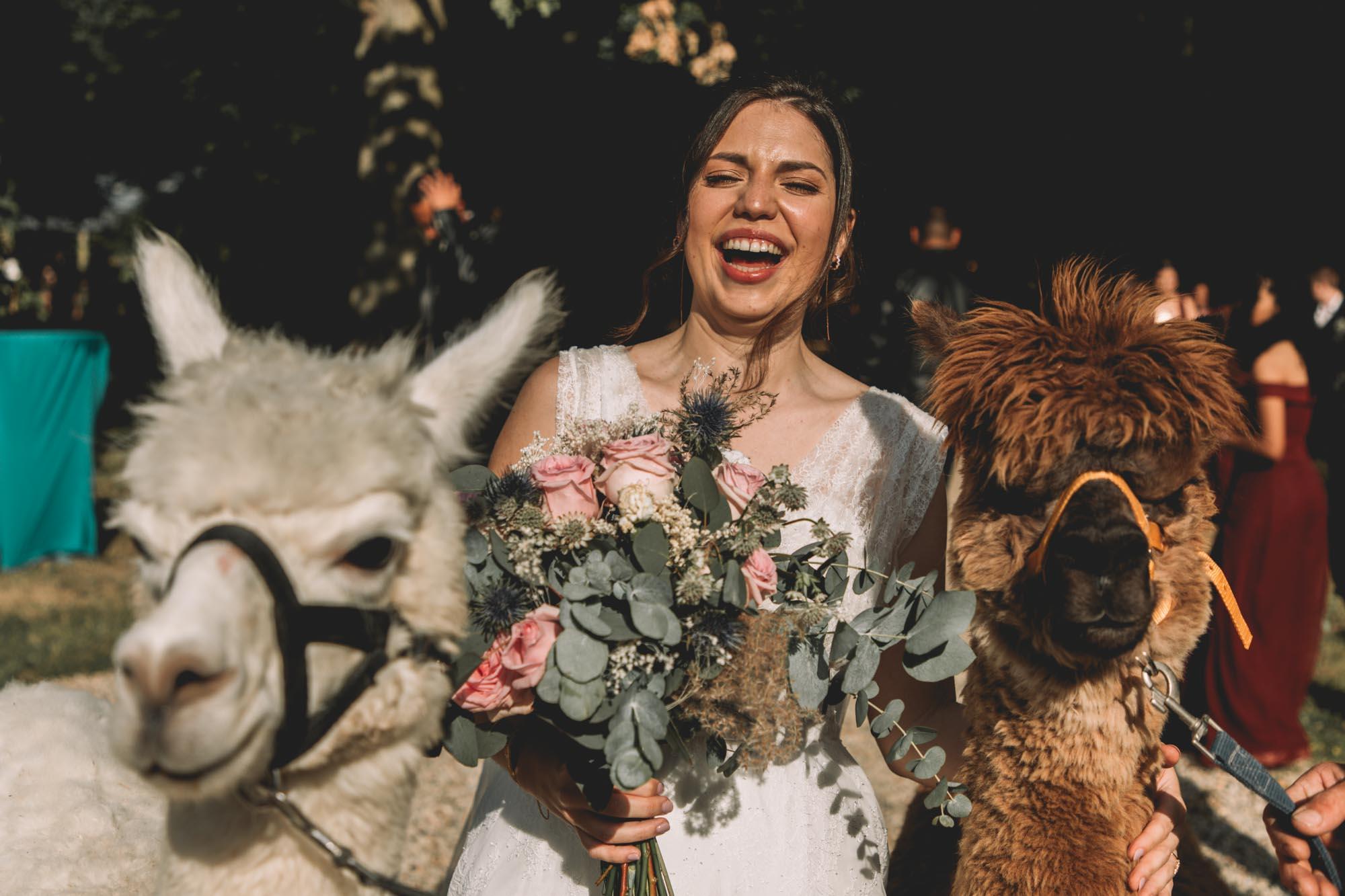SOPHIA+THIBAUD_MANOIR SAINT HUBERT_PHOTOGRAPHE_MARIAGE_LES BANDITS-37